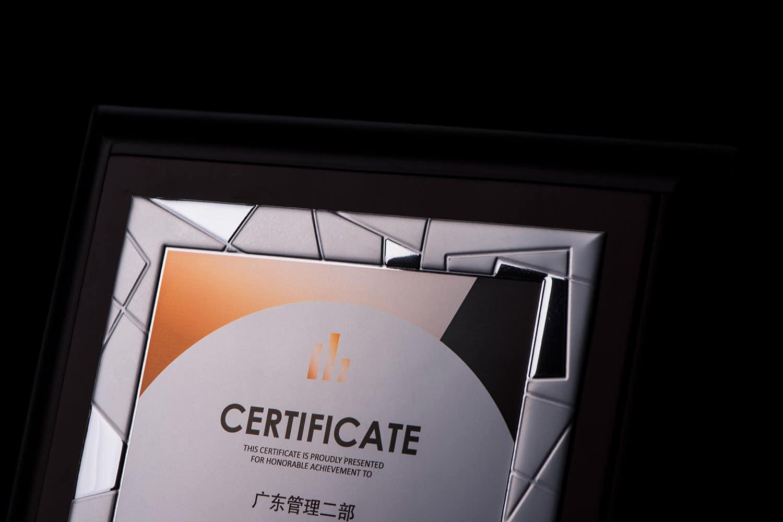 诺格精艺进口奖牌银色浮雕镜面效果-成都高端奖牌定制